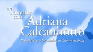 Download Um Semestre com Adriana Calcanhotto Video