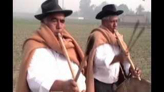 Download RONCADORAS DE CORONGO DE LOS HNOS FAJARDO - DOS PALOMAS Video