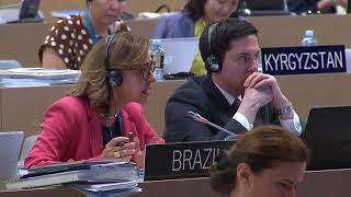 Download 42nd World Heritage Committee 30 June 2018 AM Video