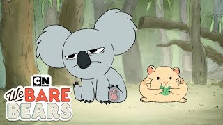 Download We Bare Bears | Nom Nom vs Hamster (พากย์ไทย) | Cartoon Network Video