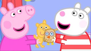 Download Peppa Pig English Episodes | Peppa Pig's Sleepover | Peppa Pig Official Video