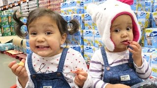 Download The Reality of Shopping with Toddlers - November 16, 2016 - ItsJudysLife Vlogs Video