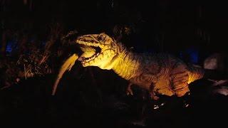 Download DINOSAUR Ride 2016, Low Light in Color, Disney's Animal Kingdom, Walt Disney World Resort Video