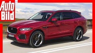 Download Zukunftsaussicht: Jaguar J-Pace (2019) Details / Erklärung Video