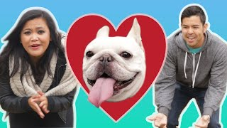 Download The Ultimate Dog Loyalty Test Video