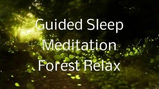 Download Guided Sleep Meditation FOREST RELAX By Jason Stephenson Video
