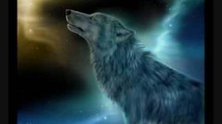 Download Alone Wolf (violin) Video