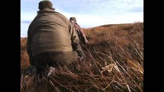 Download Stalking & HUNTING Red Stags in Scotland - Hirschjagd in Schottland Video
