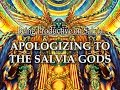 Download Apologizing to the Salvia Gods on Salvia Video