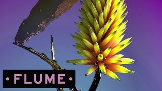 Download Flume - Say It feat. Tove Lo Video