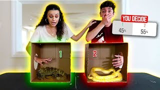 Download DO NOT Put Your Hand in the WRONG MYSTERY BOX!! (you decide) Video