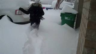 Download SNOW DAY! Springdale AR Feb 9 2011 Video