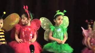 Download Butterfly Colours song SCIL Video