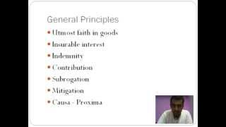 Download Insurance - Basics and Types Video