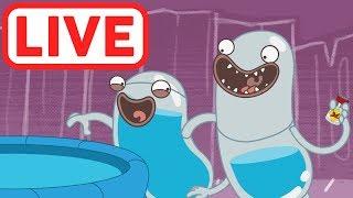 Download Hydro et Fluid LIVE | La science est amusante! | Dessins Animés pour Enfants | WildBrain Video