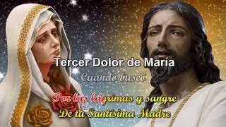 Download ROSARIO DE LOS 7 DOLORES ROSA MISTICA Video
