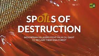 Download Spoils of Destruction: Villagers fight palm oil giant to reclaim rainforest (Trailer) Premiere 05/04 Video
