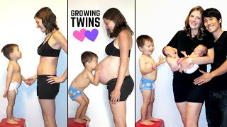 Download Twin Pregnancy Belly Progression (Stop Motion TIME LAPSE) Video