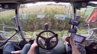 Download CLAAS JAGUAR 980 driving from the GoPro view *HD* Video