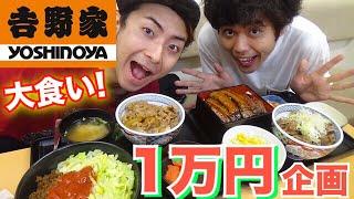 Download 【1万円企画】大食い!吉野家で1万円使い切る!!! Video