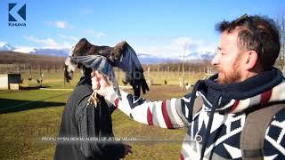 Download Kosovo farmer names one of his wolves Trump #UjkuTrump Video