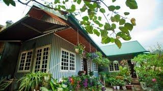 Download Nhà đẹp với Tôn - Thành Phố Hôm Nay [HTV9 – 25.03.2016] Video