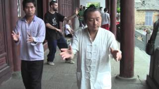 Download Training with GM Shi Fei Video
