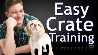 Download How to Crate Train a Puppy Video