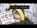 Download Stream Monkey 🙊 YouTube Live Exclusive on Premium CDN Streaming Video