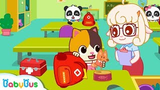 Download Baby Kitten Makes An Emergency Bag | Earthquake Safety Tips | Nursery Rhymes | Baby Songs | BabyBus Video