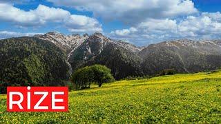 Download Rize Çamlıhemşin Çat Köyü Çat Yaylası Video