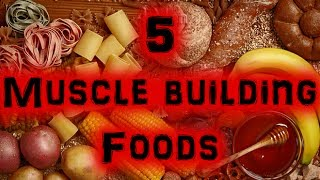Download 5 Great Muscle Building Foods [Full HD] Video