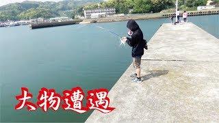 Download 連休に風裏の漁港で凄いの釣ってもらたー大物遭遇 Video