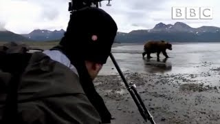 Download A grizzly bear threatens the crew - Great Bear Stakeout - Episode 2 - BBC One Video