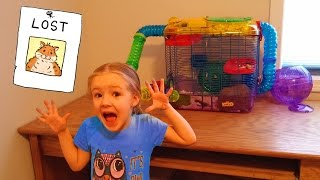 Download HAMSTER ESCAPED LOCKED CAGE!!! Rosie is Missing Somewhere in the House... Lost 🐹😱 Video