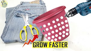 Download Do This to Grow Plant Faster 1000 times | Air Pruning DIY Experiment Hacks Video