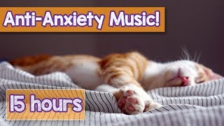 Download Calming Music for Cats with Anxiety! Deep Soothing Music for Anxious, ill and Stressed Cats! (2018) Video