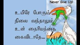 Download Never ever give up.. Self confidence speech... In Tamil Video