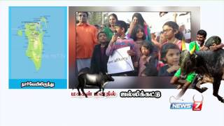 Download Jallikattu Ban: Tamilians around the world Hold Protests Video