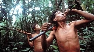 Download Nomads of the Rainforest PBS NOVA 1984 Video