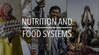 Download FAO Policy Series: Nutrition and Food Systems Video