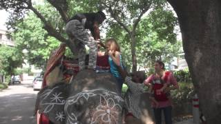 Download Melissa's Mini Adventures in Delhi Video