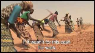 Download Niger and Mali: local population and refugees facing food crisis Video