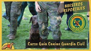 Download Así se preparan los futuros guías caninos de la Guardia Civil Video