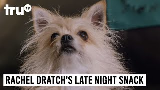 Download Late Night Snack - Classified Comedy: Pickles the Dog Video