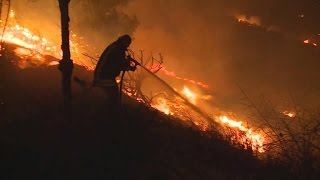 Download Israel wildfire burning out of control Video