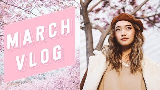 Download March Monthly Vlog | clothesencounters Video