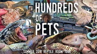 Download Reptile Room Tour Summer 2018 | HUNDREDS OF ANIMALS in ONE Room! Video