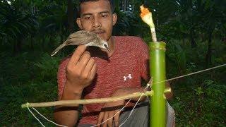 Download membuat jebakan burung trucukan dari bambu | easy bird trap Video
