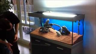 Download Aquarieneinrichtung mit Oliver Knott Video